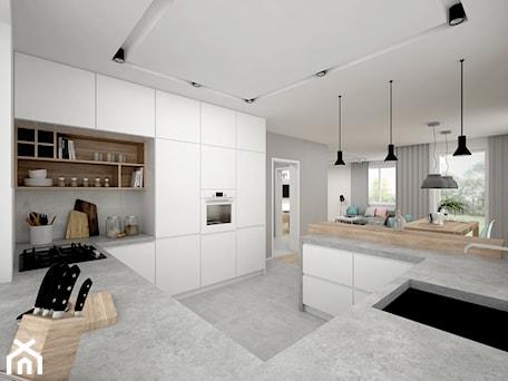 Aranżacje wnętrz - Kuchnia: Projekt domu 70 m2 / Jabłonka - Duża otwarta biała szara kuchnia w kształcie litery g, styl skandynawski - BIG IDEA studio projektowe. Przeglądaj, dodawaj i zapisuj najlepsze zdjęcia, pomysły i inspiracje designerskie. W bazie mamy już prawie milion fotografii!
