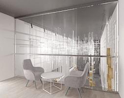 Małe szare biuro kącik do pracy, styl minimalistyczny - zdjęcie od Alina Shevchenko