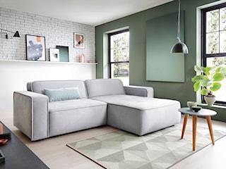 Kanapa do salonu – jaką wybrać, by się wyróżnić? Zobacz 3 nietypowe sofy
