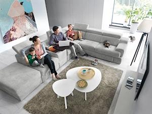 Wygodna sofa do salonu – jak wybrać odpowiedni model na czas kwarantanny i nie tylko?