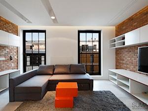 LOFT ONE - REALIZACJA - SUMA Architektów