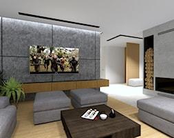 Strefa+TV+-+zdj%C4%99cie+od+MONOdizajn+Architektura+i+Wn%C4%99trza