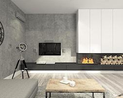 Salon+-+zdj%C4%99cie+od+suspenzo+architectural+group