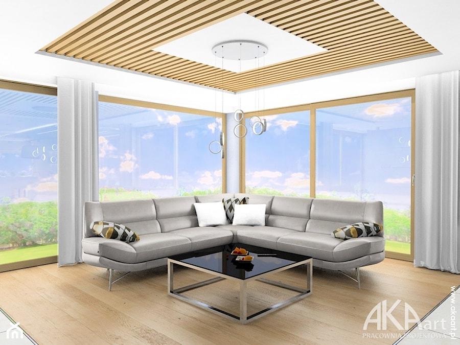 Nowoczesne wnętrza domu w Gliwicach - Salon, styl nowoczesny - zdjęcie od AKAart Pracownia Projektowa