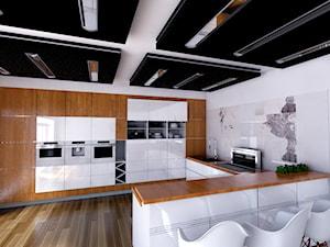 modern kitchen with IQ 700 - zdjęcie od Michał Ślusarczyk