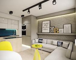 salon z aneksem kuchennym - zdjęcie od Michał Ślusarczyk