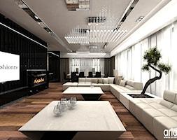 salon nowoczesny - projekty wnętrza - zdjęcie od ARTDESIGN architektura wnętrz