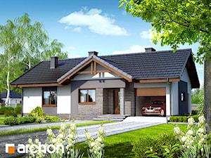Projekt domu ARCHON+ Dom w nerinach