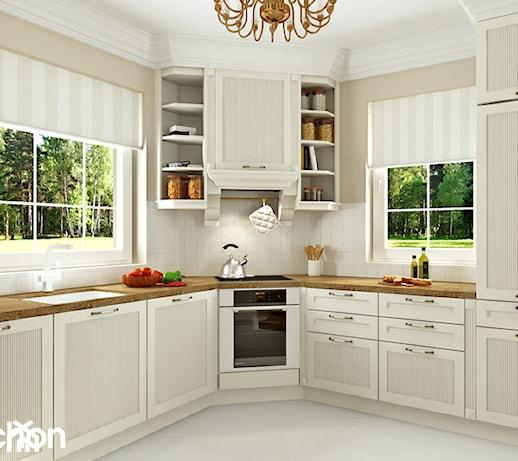 Dom W Rododendronach 6 Ver 3 Aranżacja Kuchni Zdjęcie