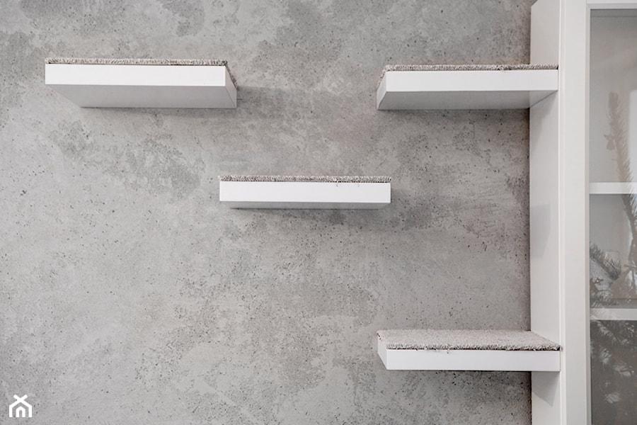 Półki Dla Kota Na ścianie Betonowej Zdjęcie Od Monika
