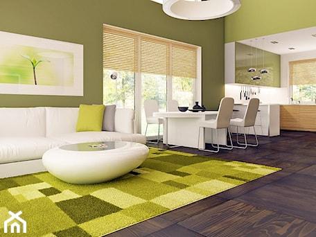 Średnia otwarta zielona jadalnia w salonie, styl nowoczesny - zdjęcie od Anita Bil