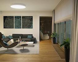 Salon styl Minimalistyczny - zdjęcie od Pracownia InSide