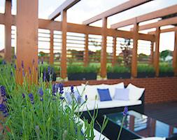 Ogród z pergolą na tarasie - Mały taras z przodu domu z tyłu domu - zdjęcie od Pracownia Projektowa Architektury Krajobrazu Januszówka