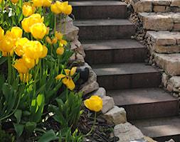 Ogród z altaną - Średni ogród za domem, styl nowoczesny - zdjęcie od Pracownia Projektowa Architektury Krajobrazu Januszówka