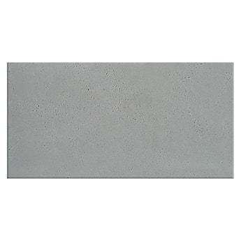 Płyta betonowa 50x100 cm