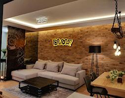 Salon+-+zdj%C4%99cie+od+Elkamino+Dom