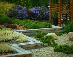 Ogród prywatny Wola Chorzelowska - Średni ogród za domem - zdjęcie od Ogrody Mielec - Homebook
