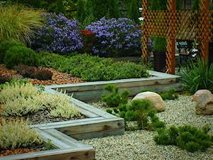 Ogród prywatny Wola Chorzelowska - Średni ogród za domem - zdjęcie od Ogrody Mielec