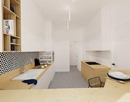 Kuchnia w Paryzu - Duża zamknięta kuchnia dwurzędowa, styl nowoczesny - zdjęcie od Ale design Grzegorz Grzywacz