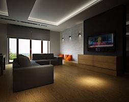 Przestronny salon - zdjęcie od Studio Aranżacja - Homebook