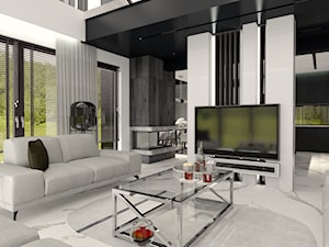 Odważny, monochromatyczny dom 180 m2