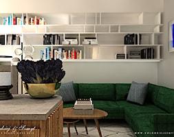 FANCY - Salon, styl nowoczesny - zdjęcie od Kołodziej & Szmyt - Homebook