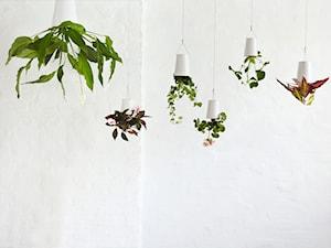 Sky Planter -Doniczki do góry nogami