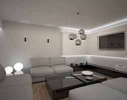 New+house+-+experimental+render+-+zdj%C4%99cie+od+ZELER-DESIGN