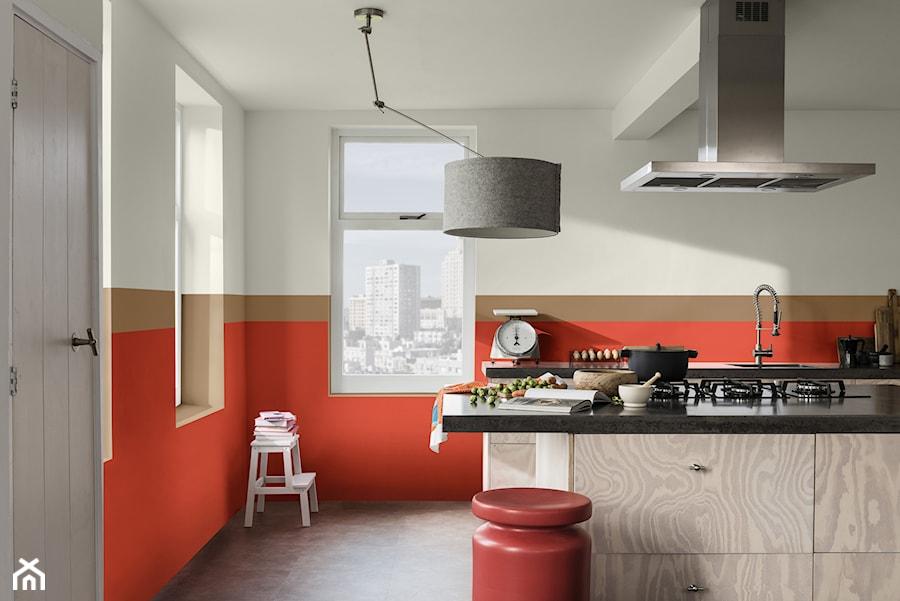 Kolor Roku 2019 Kuchnia Styl Eklektyczny Zdjęcie Od Dulux