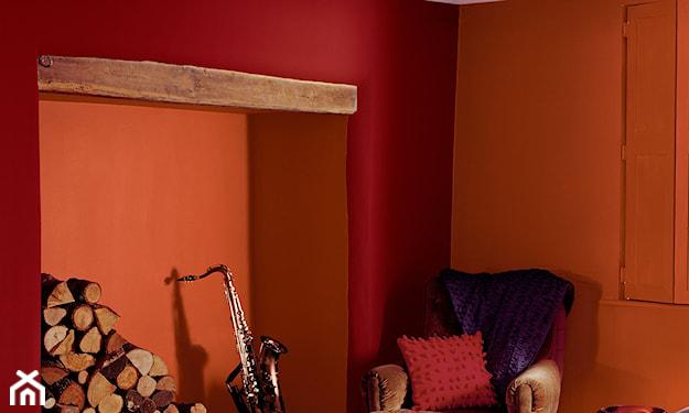 czerwona ściana w salonie