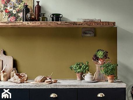 Aranżacje wnętrz - Kuchnia: Kolor Roku 2020 - Mała zamknięta szara zielona kuchnia jednorzędowa, styl rustykalny - Dulux. Przeglądaj, dodawaj i zapisuj najlepsze zdjęcia, pomysły i inspiracje designerskie. W bazie mamy już prawie milion fotografii!