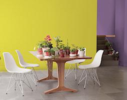 Kuchnie i jadalnie - Średnia otwarta fioletowa żółta jadalnia jako osobne pomieszczenie - zdjęcie od Dulux