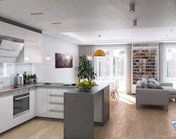 Wnętrze domu w zabudowie szeregowej - Ruda Śląska - Średnia biała kuchnia w kształcie litery l w ane ... - zdjęcie od RESE Architekci Studio Projektowe - Homebook
