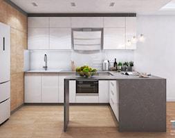 Wnętrze domu w zabudowie szeregowej - Ruda Śląska - Kuchnia, styl nowoczesny - zdjęcie od RESE Architekci Studio Projektowe - Homebook