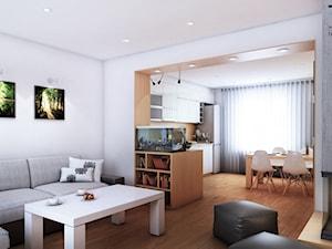 Projekt kuchni, jadalni i salonu