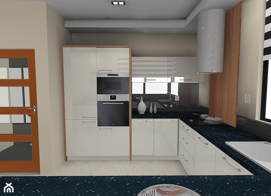 Wizualizacja Projektu Kuchni Zdjęcie Od Anna Jędrzejuk