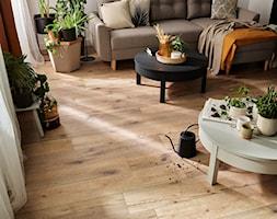 Kolekcja Querra WR - Salon, styl eklektyczny - zdjęcie od VOX - Homebook