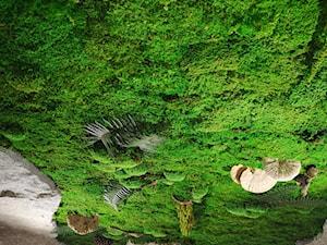 Nature's Design - Produkty Natury - Producent
