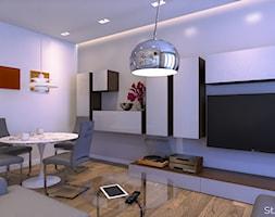 Salon+-+zdj%C4%99cie+od+Atelier+S%C5%82owi%C5%84ski