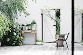 bielone deski tarasowe, czarne krzesło, betonowa donica z drzewkiem
