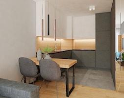 Aneks+kuchenny+-+zdj%C4%99cie+od+AJOT+pracownia+projektowa