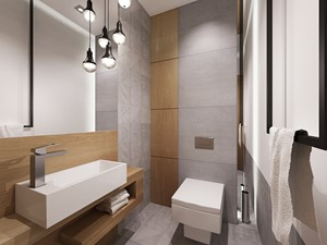 łazienka w szarosciach