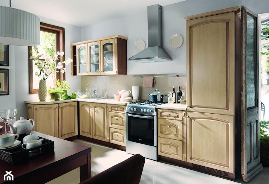 Kuchnie średnia Otwarta Biała Kuchnia W Kształcie Litery