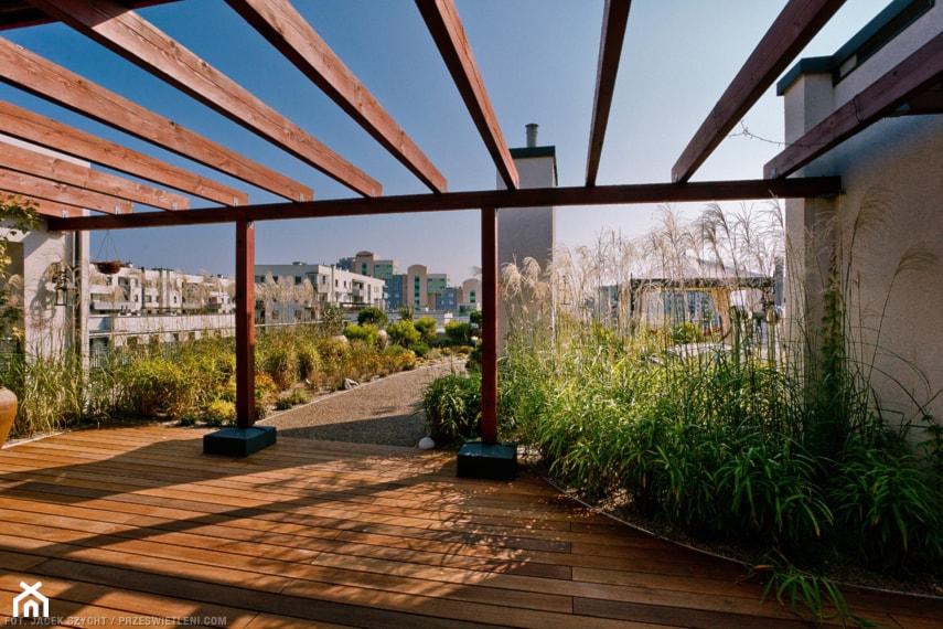 jak założyć ogród na dachu