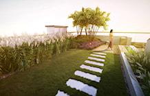 Trawnik na dachu - zdjęcie od EMSIDE Architektura Krajobrazu
