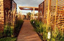 Emside - ogród na dachu - zdjęcie od EMSIDE Architektura Krajobrazu