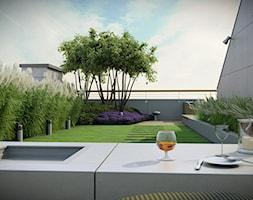 Ogr%C3%B3d+na+dachu+-+zdj%C4%99cie+od+EMSIDE+Architektura+Krajobrazu