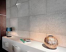płyty z betonu architektonicznego concreAte - zdjęcie od concreAte