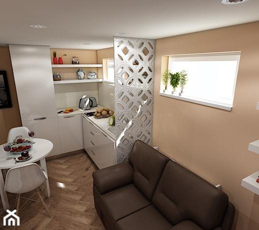 Sypialnia I Salon W Jednym Aranzacje