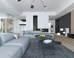 Projekt 49 - Salon, styl minimalistyczny - zdjęcie od PASS architekci - Homebook